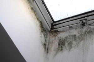 humidité autour des fenêtres